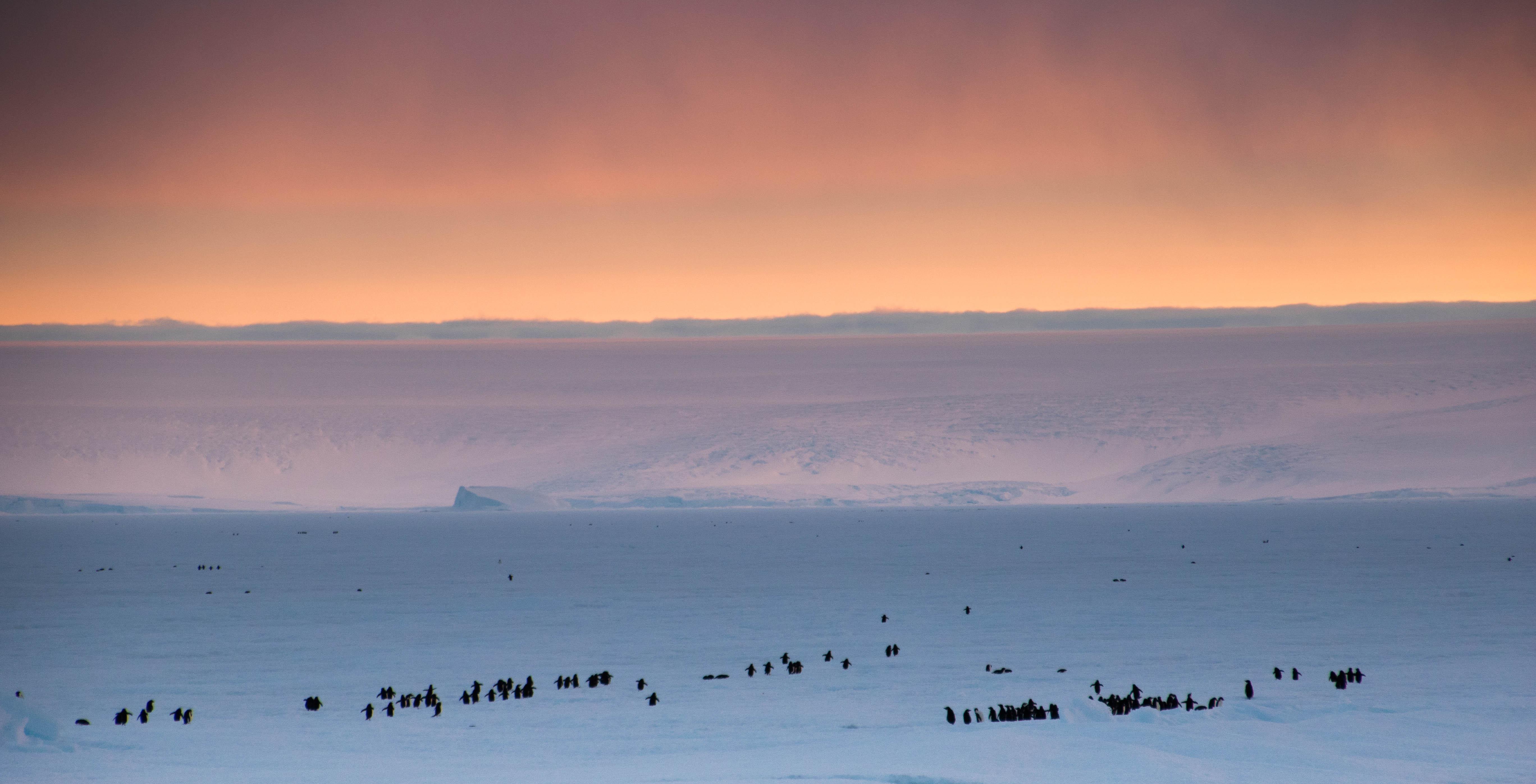 Spectacular sunset in Antarctica