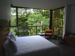 Bed with a massive window and view of the jungle.