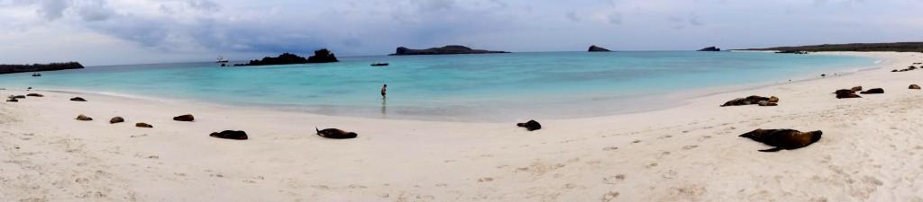 39_GARDNER BAY PANO_Galapagos