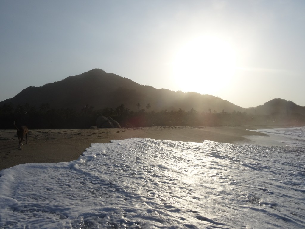 37_TAYRONA BEACH_Colombia