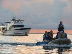Beluga-passengers