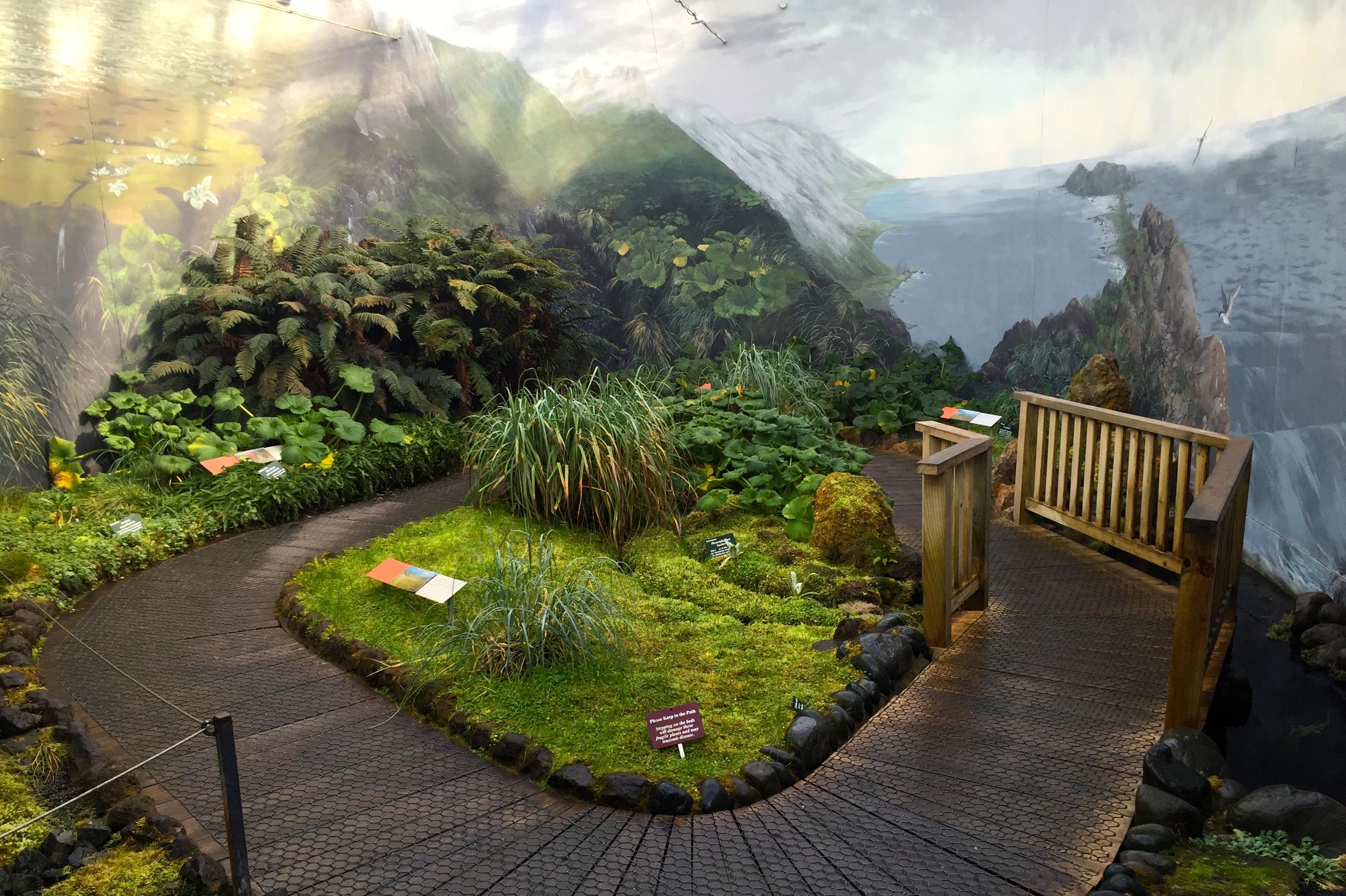 20_SUBANTARCTIC PLANT HOUSE INT