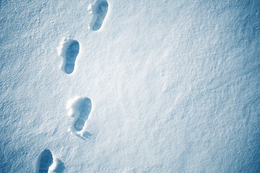 leave only footprints and combat climate change