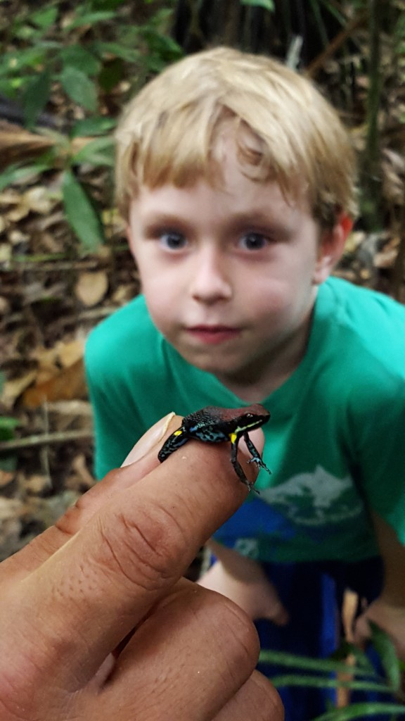 Rodrigo shows the kids a poison dart frog
