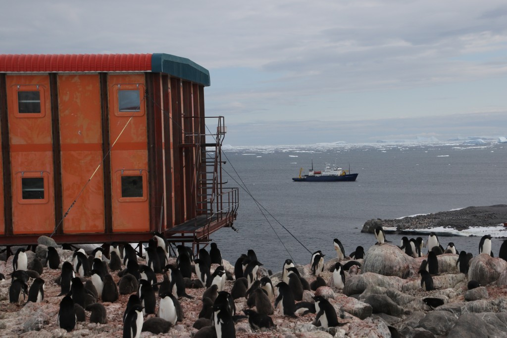 Base building in French Antarctica. Penguins in the foreground and ship in the background.