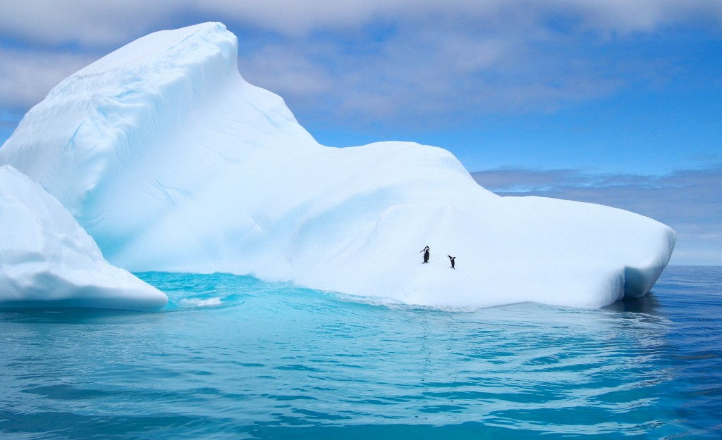 ice formations in antarctica with tiny penguins