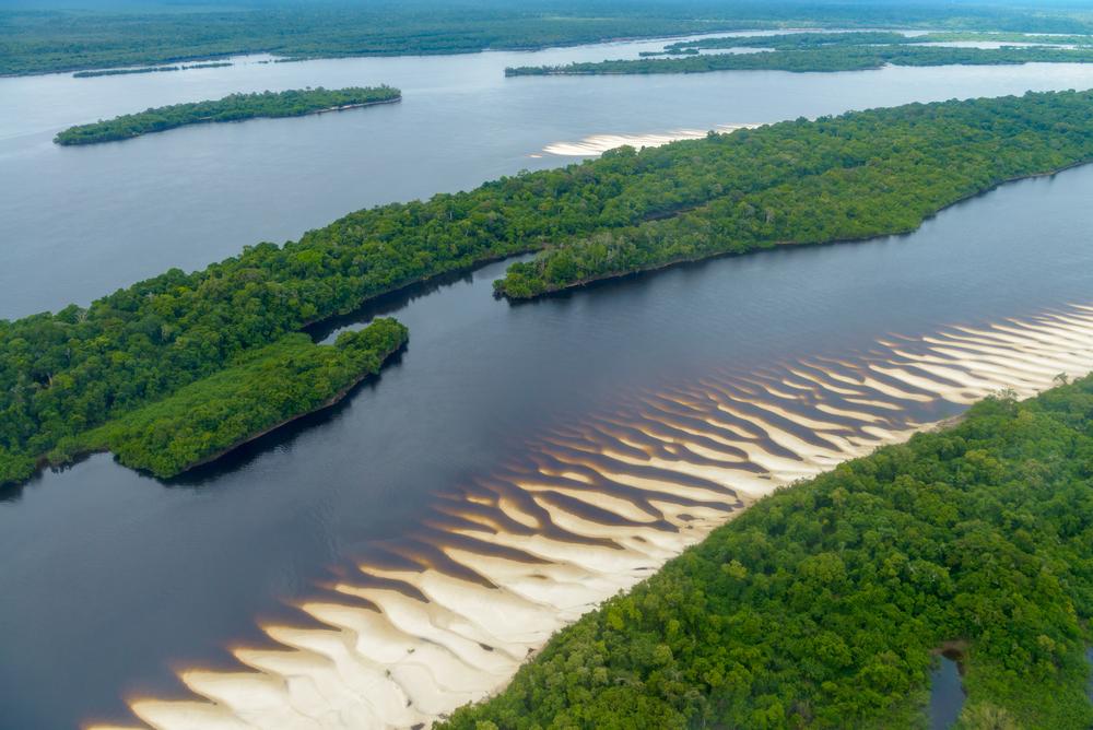 Anavilhanas National Park Islands, Rio Negro