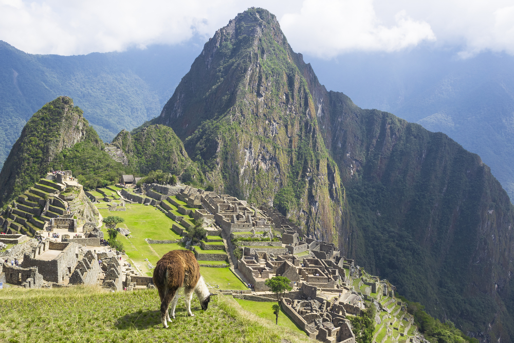 Ruins of the machu piccu in Peru with a lama foreground and mountain is in the background