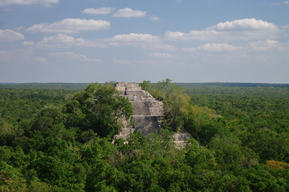 ancient maya ruin in the rain forest