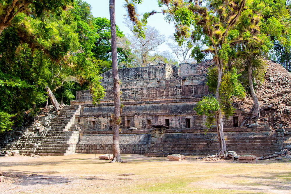 ancient ruin surrounded by trees copan honduras