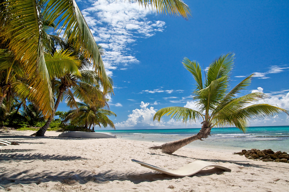 white beach with palmtrees and blue sea in Cuba