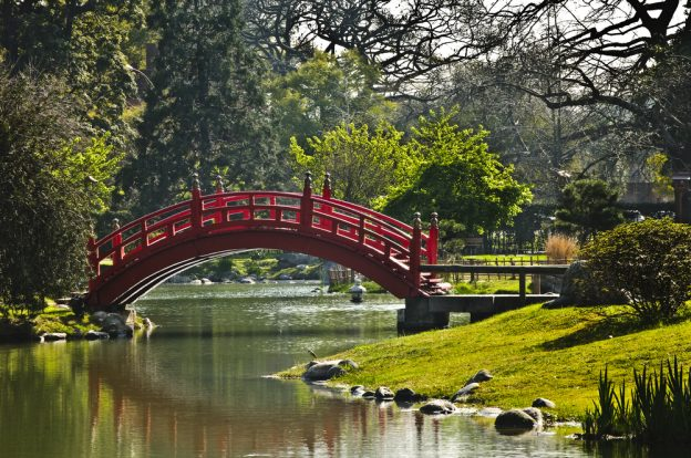 red japanese bridge over a pond with trees