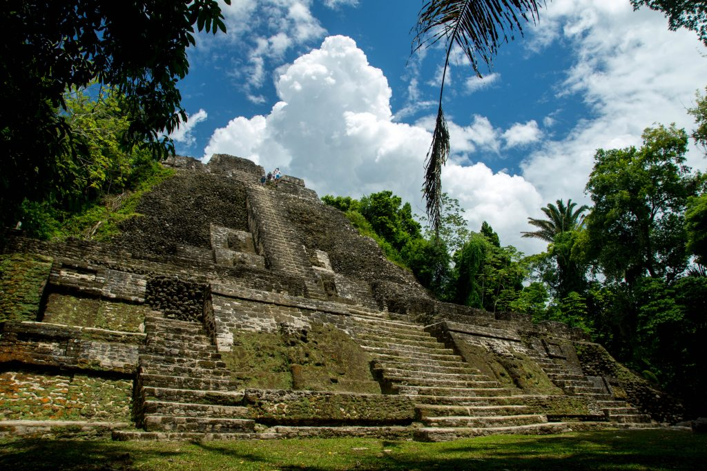 ancient Maya ruin in forest