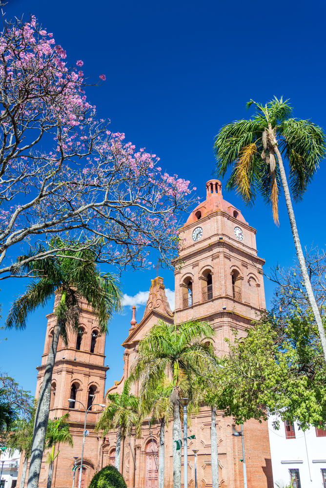 pink cathedral palm trees santa cruz