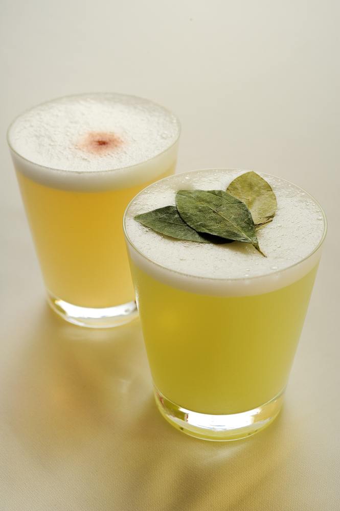 cocktail made from Pisco