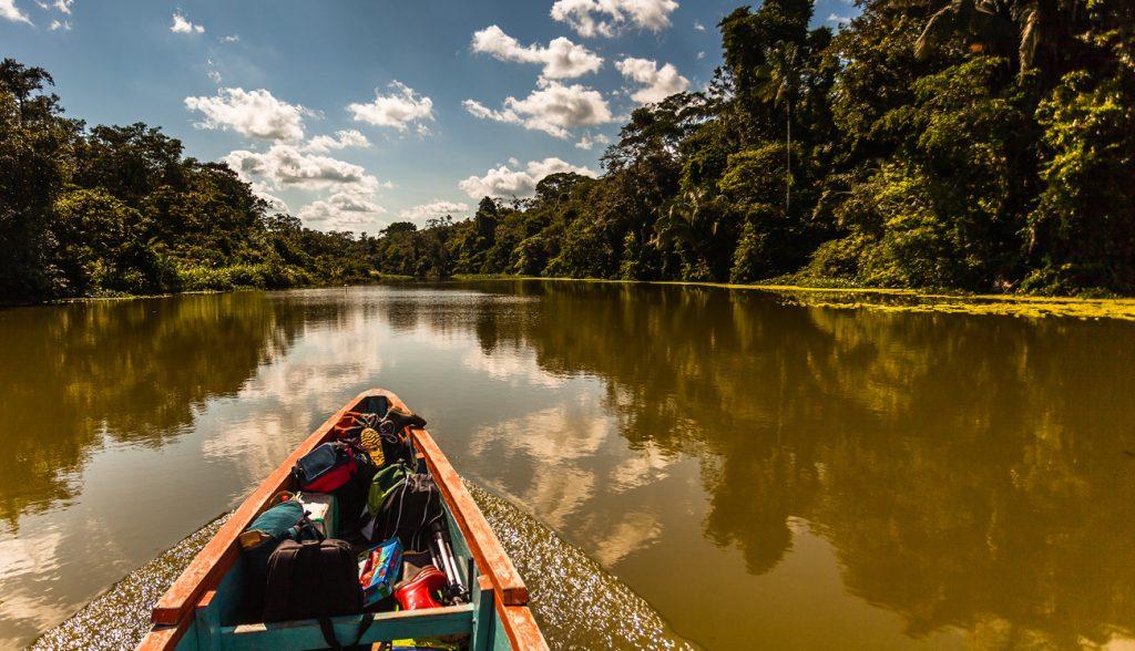 Reflected jungle in the Limoncocha lagoon in the Ecuadorian Amazon