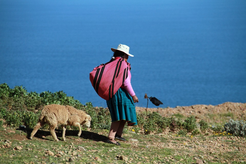traditional peruvian woman walking with dog view over lake