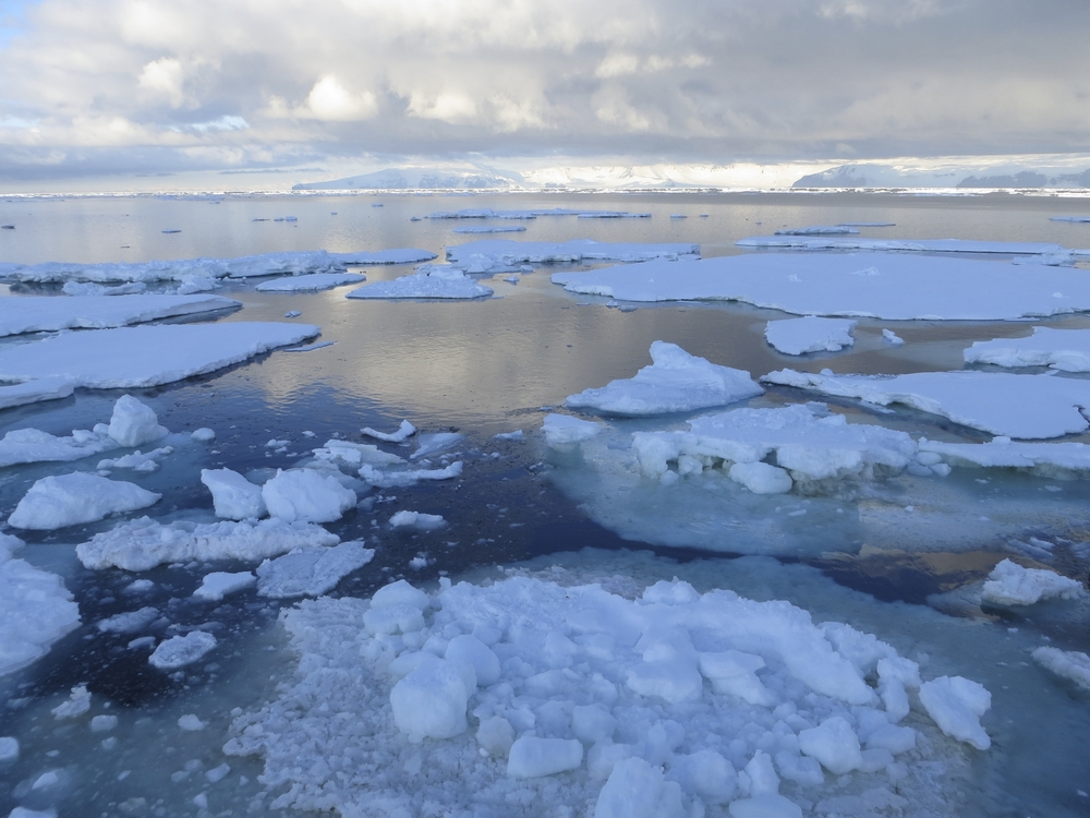 Ice floating on the Ross Sea