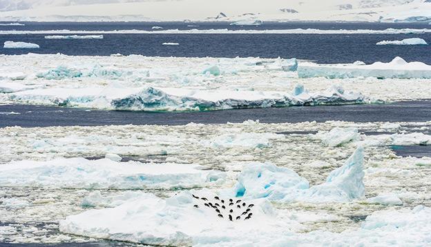 The Antarctic Circle
