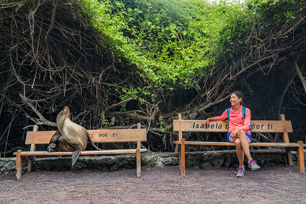 A woman and a seal relaxing on benches in the Galapagos Islands, Ecuador