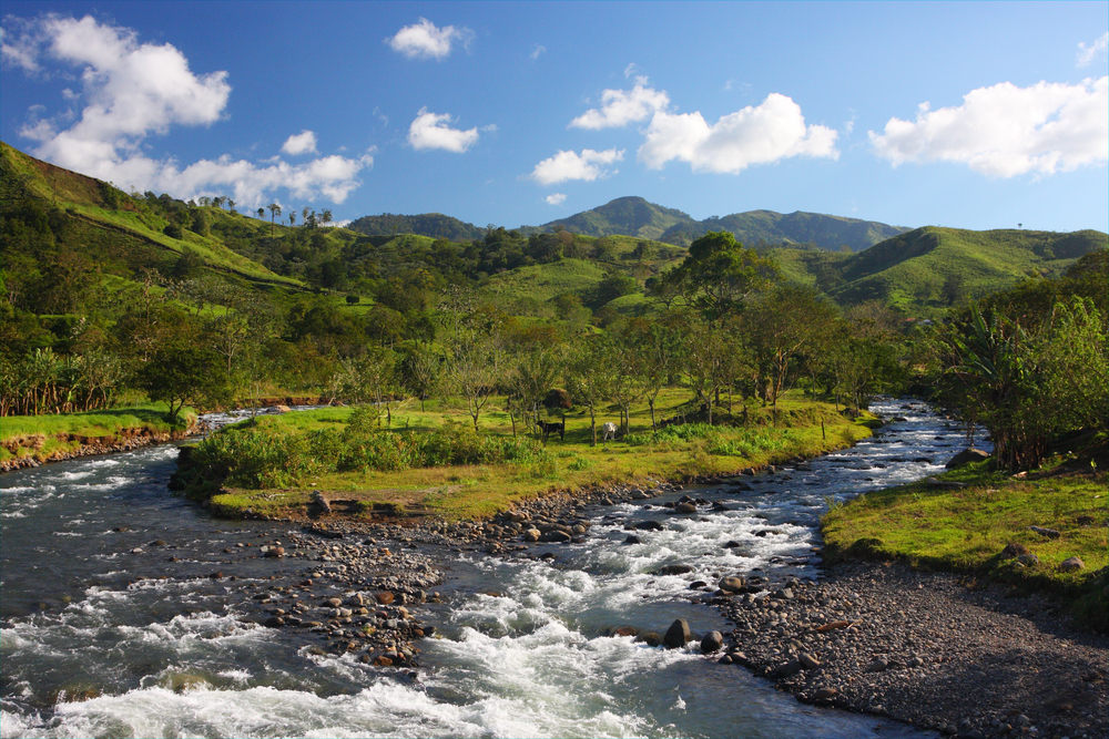 splitting river with forest and mountains in the background costa rica