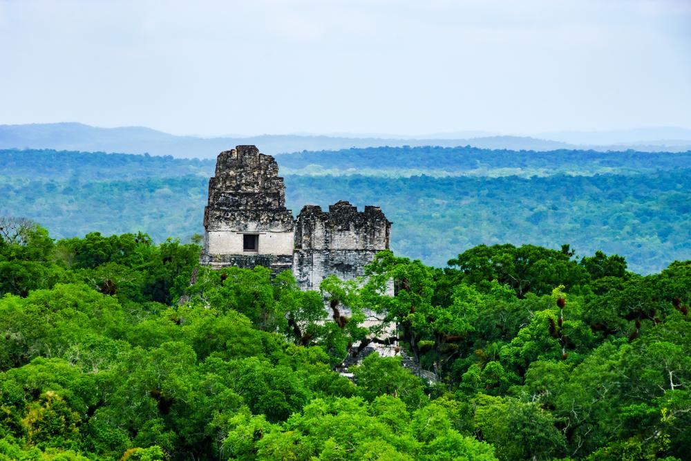 ancient mayan ruin in guatamala forest