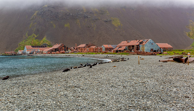 Abandoned whaling station on South Georgia. Photo credit: Shutterstock.