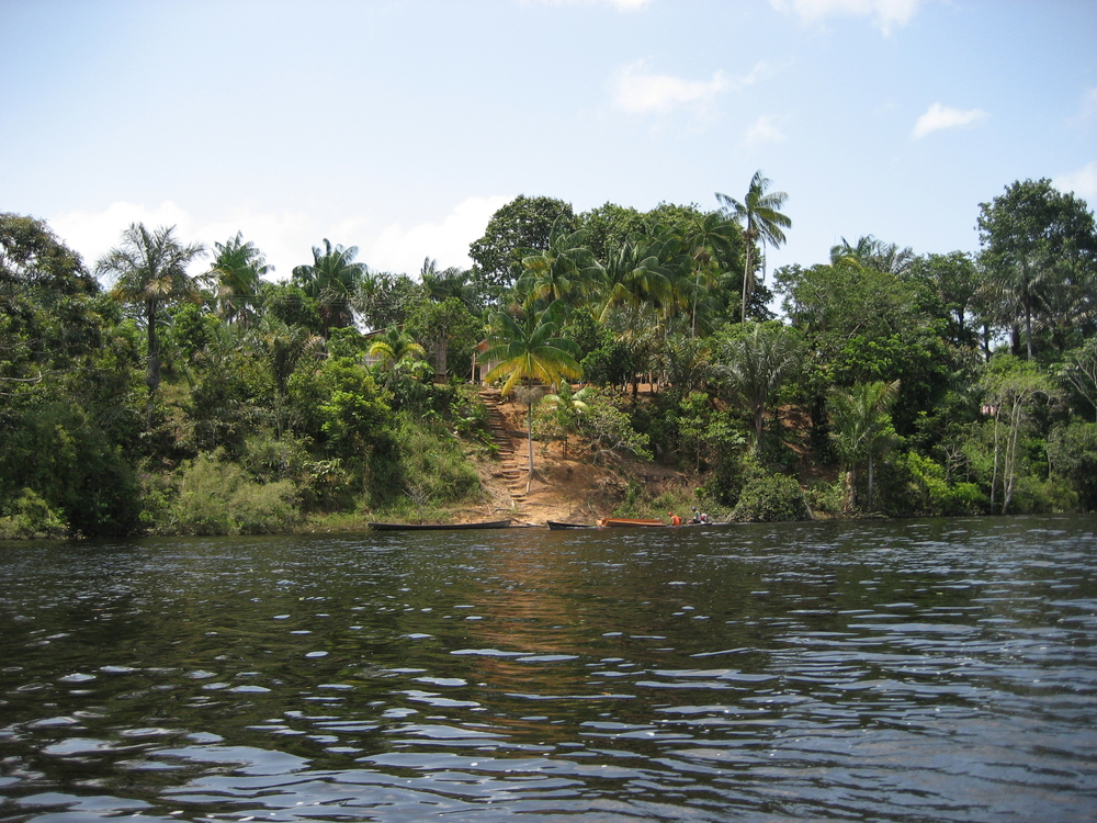 Tributary of the Amazon River