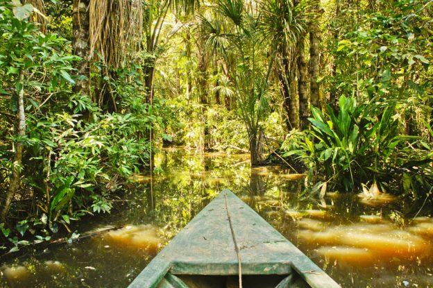 Amazon basin.