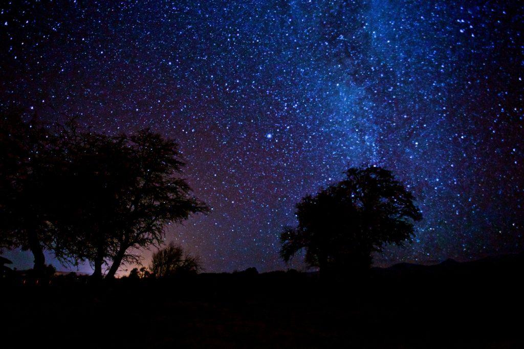 Star gazing in the Atacama desert