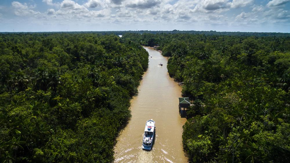 Sailing through the Amazon