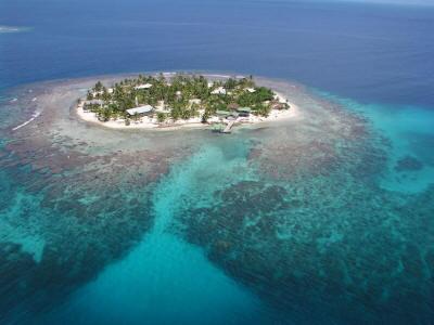 One of the great snorkel spots: Cayos Grande, Honduras.