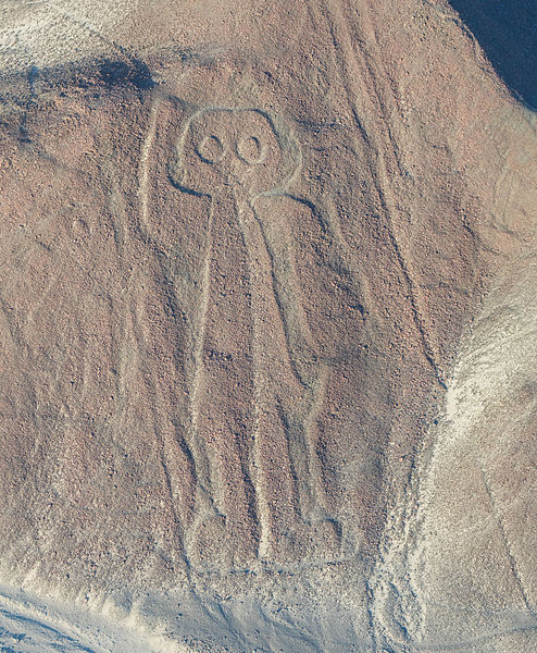 An Astronaut visible in the Nazca Lines.
