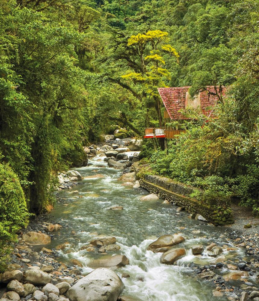 Tambopata National Reserve.