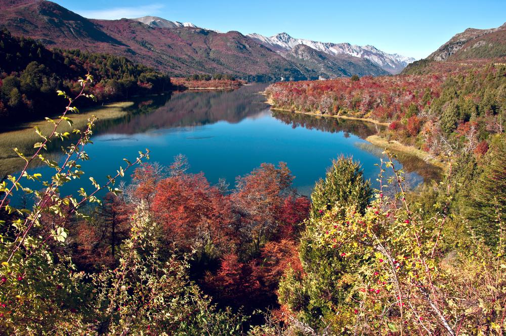 Autumn colours in Bariloche.