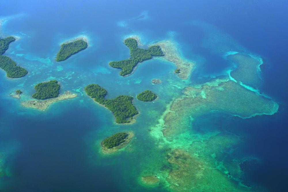 Mangrove Islands of Bocas del Toro, Panama.