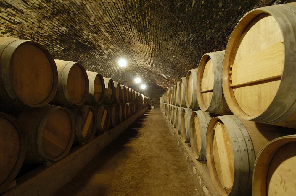 Wine Cellar of Casillero del Diablo wine, close to Santiago