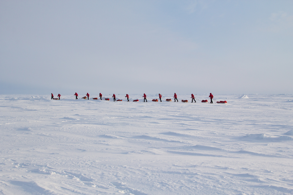 Skiers go to the North pole from Russian Barmeo Ice Camp