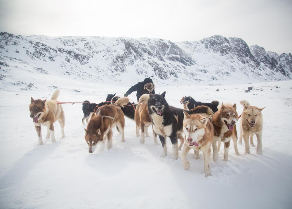 Western Greenland.