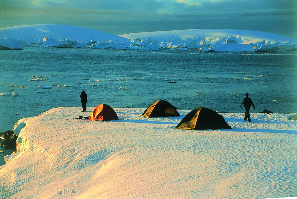 Get the ultimate Antarctica feeling by camping on shore.