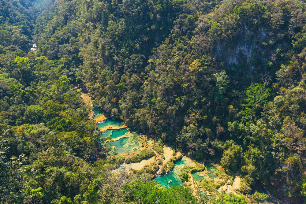 Aerial view of the turquoise waterfalls of Semuc Champey which are famous for swimming, deep in the jungle of Guatemala.