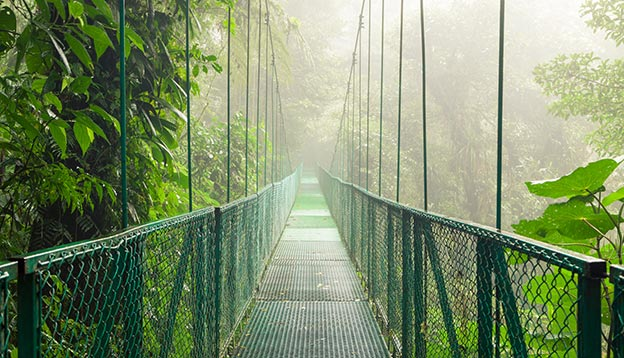 Hanging Bridge - Monteverde Cloud Forest