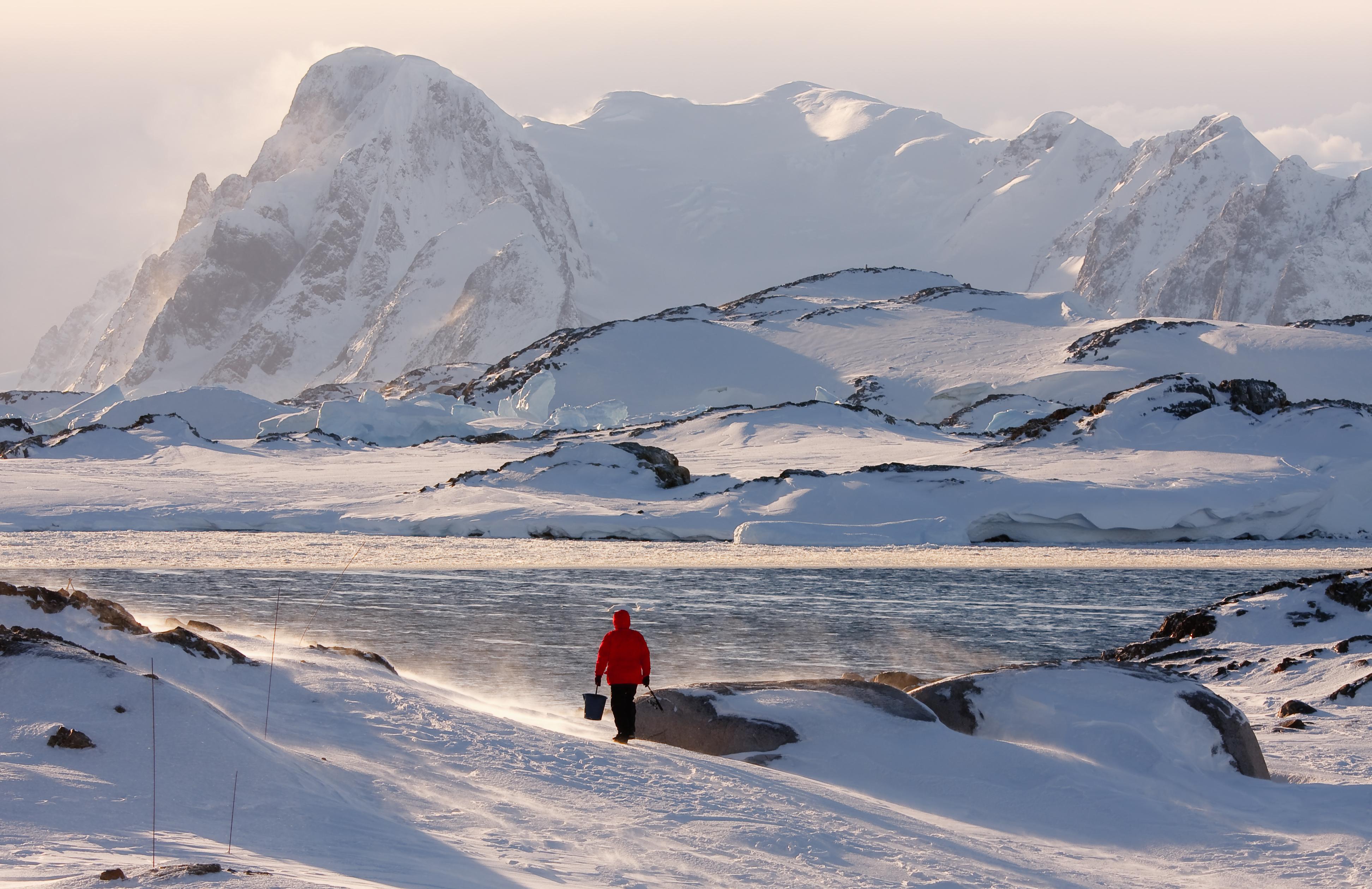 Solo traveller in Antarctica