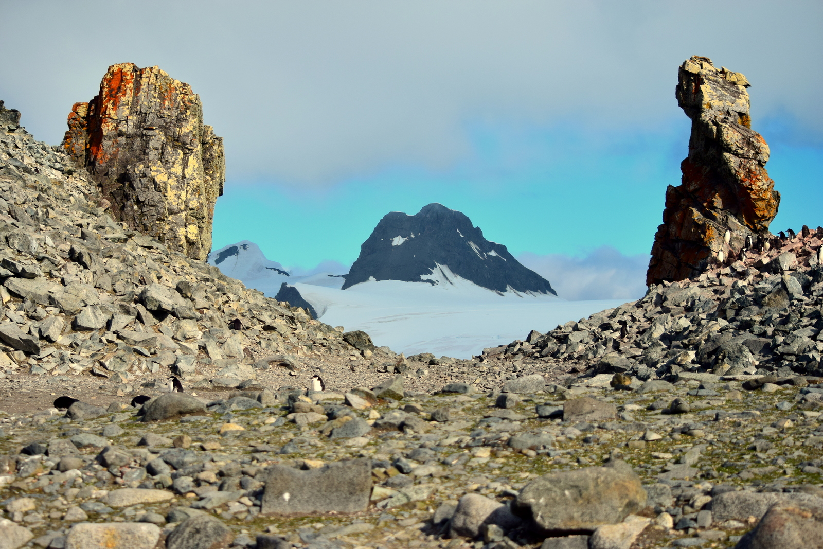 View of mountain from Half Moon island Antarctica