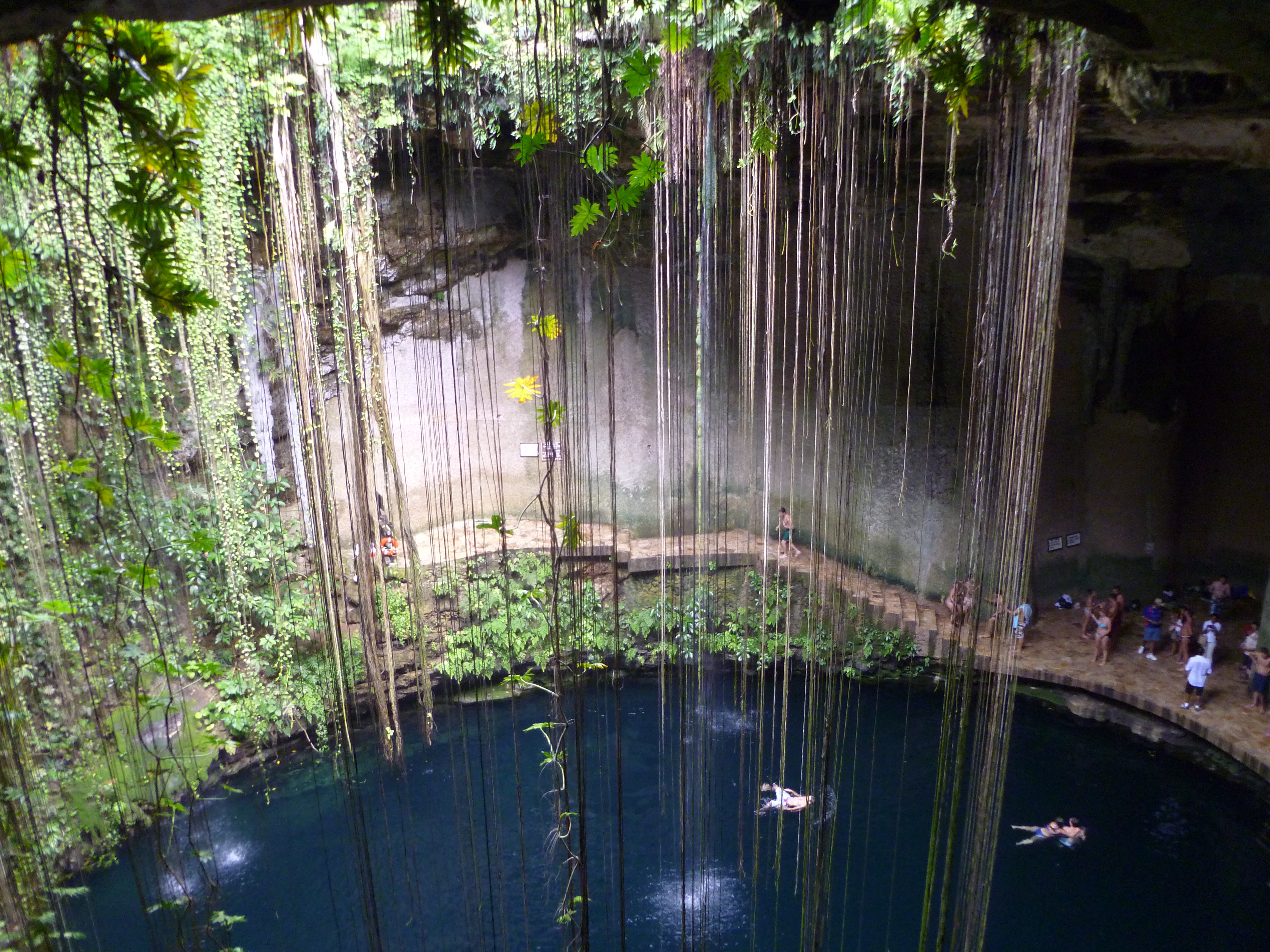 people swimming in the Cenotes in Maya Riviera in Mexico