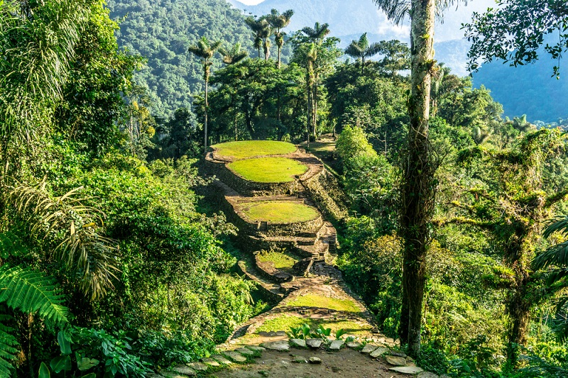 The lush green jungles of Ciudad Perdida, Colombia.