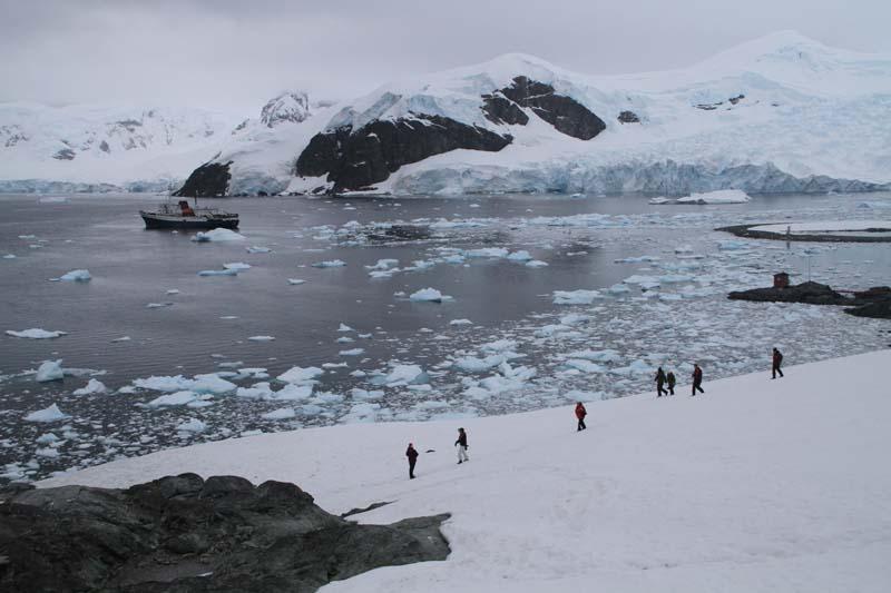 Highlights of Antarctica