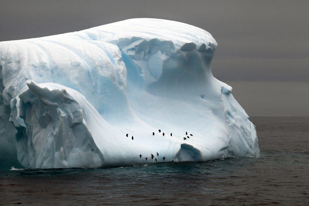 Antarctic iceberg, Chimu Adventures