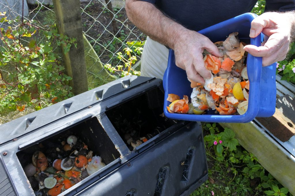 Mature man hands emptying a container full of domestic food waste, ready to be composted in the home garden. Food recycling and environment concept. copy space. environmental