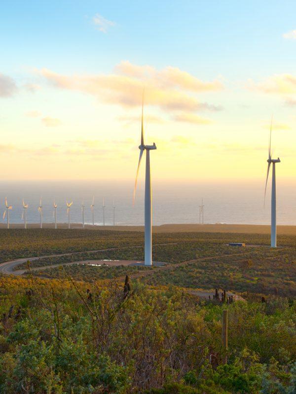 Windmills at wind farm, Coquimbo Region, Chile credit shutterstock